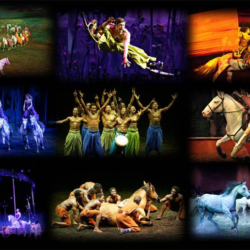 Monday Love to Cavalia — The Greatest Equestrian Dance on Earth!